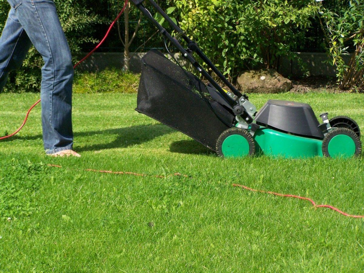Maszyny ogrodowe – jak dbać o silnik kosiarki?